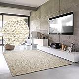 Hand-Web-Teppich 'Amrum'   Handgewebte Schurwolle im modernen Design   Fürs Wohnzimmer, Esszimmer, Schlafzimmer oder Kinderzimmer   weich, mehrfarbig (Grau-Beige - 200 x 290 cm)