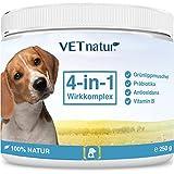 VETnatur 4in1 Grünlippmuschel-Pulver für Hunde mit Wirkungssteigerung durch Antioxidans + Präbiotika + Vitamin B + Zink / Eisen | 100% Natur | Hergestellt in Deutschland - 250g