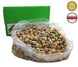 Getrocknete Feigen aus Spanien - Premiumqualität - 100% natürlich - Sonnengetrocknet - handverlesen - Superfood - Glutenfrei und Vegan - 5 Kg Karton