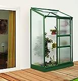 Gartenwelt Riegelsberger Anlehngewächshaus IDA - Ausführung: 900 HKP 4 mm dunkelgrün, Fläche: ca. 0,9 m², mit 1 Dachfenster, Sockelmaß: 0,65 x 1,30 m