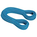 Mammut 9.5 Infinity Classic Rope 60m royal-white 2018 Kletterseil