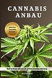 Cannabis Anbau Hanf zu Hause anbauen die perfekte Growbox Anleitung inklusive Cannabis Rezepte