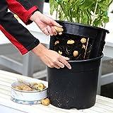 TOM-GARTEN PotatoPot inklusive 3x Küchenkräuter-Saatgut   einfaches pflanzen von Kartoffeln auf dem Balkon oder der Terasse   inklusive passendem Kräuter-Saatgut
