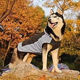PAWZ Road Hund Regenmantel mit Kapuze Kragenloch Sichere Reflektierende Streifen Wasserdichte Regenjacke für kleine Mittel Große Hunde Yellow M