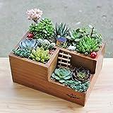 Pflanztrog aus Holz für Garten und Fenster, Blumenkasten für Sukkulenten mit drei verschiedenen Fächern.