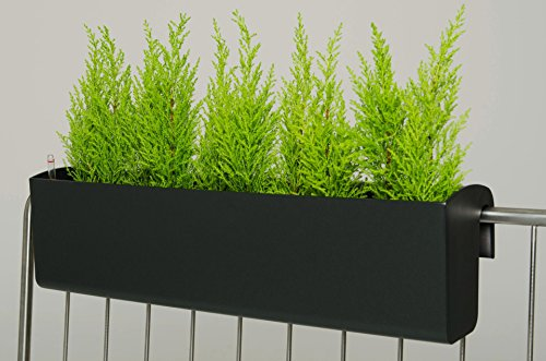 Balkonkasten 'Balkona Classico' 80 cm, Anthrazit mit Bewässerungsset