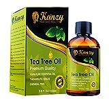 KANZY  -Tea-Baum-wesentliches Öl - 100% reine - 100ml