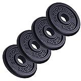 Scsports 5 kg Hantelscheiben Set, ideal für Kurzhanteln, 4 x 1,25 kg, Gusseisen Gewichte, 30/31 mm Bohrung