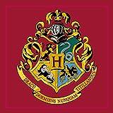 Harry Potter Hogwarts 'Emblem' Quadratischer Teppich Schlafzimmer Fußmatte