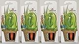 4er-Set Bewässerungskugel Wasserspender *Bördy L* in grün - H20cm/220ml