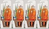 4er-Set Bewässerungskugel Wasserspender *Bördy L* in orange - H20cm/220ml