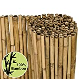 Sol Royal Sichtschutz Bambus Zaun Massiv 150x250cm (HxB) SolVision B38 Bambusmatte Premium - Bambusstangen als Sichtschutzmatte Natur mit dickem Bambusrohr