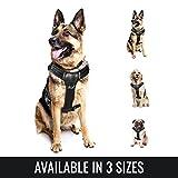 BELISY Gepolstertes Hundegeschirr Reflektierend aus Nylon und Kunstleder - Leicht Verstellbar - S, M, L - Schwarz - Y-Geschirr mit Griff für große Hunde - Brustgeschirr - Weste - Dog Harness