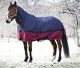 Amesbichler Pferde Outdoordecke Weidedecke Equitheme TYREX 1200 mit Halsteil Denier 200g Füllung, wasserdicht, atmungsaktiv, Kreuzgurte, Schweiflatz, 145 cm