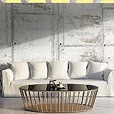 murando - Vlies Fototapete 500x280 cm - Vlies Tapete - Moderne Wanddeko - Design Tapete - Beton Textur f-A-0458-a-a