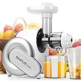 SimpleTaste Automatischer Horizontaler Entsafter Kaltpress Slow Juicer mit Saftbehälter, maximale Nährstoffextraktion für Obst und Gemüse