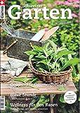 Schweizer Garten (CH) 9 2018 Kräutererde Astern Rasen Zeitschrift Magazin Einzelheft Heft Im Grünen daheim