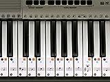 Klavier Aufkleber für 49 / 61 / 76 / 88 Key Keyboards - Transparent, herausnehmbar
