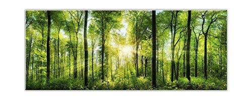 STYLER EX121 Glasbild, Glas, Grün, 0.4 x 125 x 50 cm