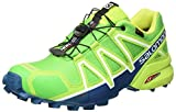 Salomon Herren Speedcross 4 GTX Trailrunning-Schuhe,Grün (Classic Green/Lime Green/Poseidon), 42 EU