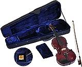 Steinbach 4/4 Geige im SET, lila, handgearbeitet