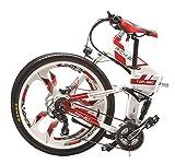 RICHBIT eBike RLH-860 Elektro-Fahrrad Klapp Mountainbike MTB e Fahrrad 36V * 250W 12.8Ah Lithium - Eisen Batterie 26Zoll Magnesium Integriertes Rad (Rot)