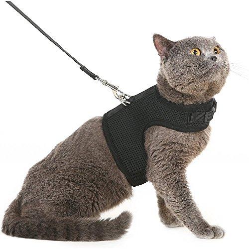 Ausbruchsicheres Katzengeschirr und -leinevon Bingpet – Einstellbarer, weicher Mesh-Holster –ideal für das Ausführen kleiner Kätzchen