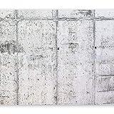 murando - Fototapete Betonoptik 350x256 cm - Vlies Tapete - Moderne Wanddeko - Design Tapete - Wandtapete - Wand Dekoration - grau f-A-0332-a-a