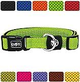 DDOXX Hundehalsband Air Mesh   für große & Kleine Hunde   Katzenhalsband   Halsband   Halsbänder   Hundehalsbänder   Hund Katze Katzen Welpe Welpen   klein breit Leuchtend bunt   Grün, XS