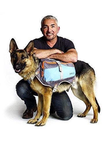 Cesar Millan Dog Backpack - Hunderucksack des Hundeflüsterers Cesar Millan