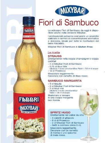 Fabbri Mixgetränk Fior di sambuco- Holundersirup 1L