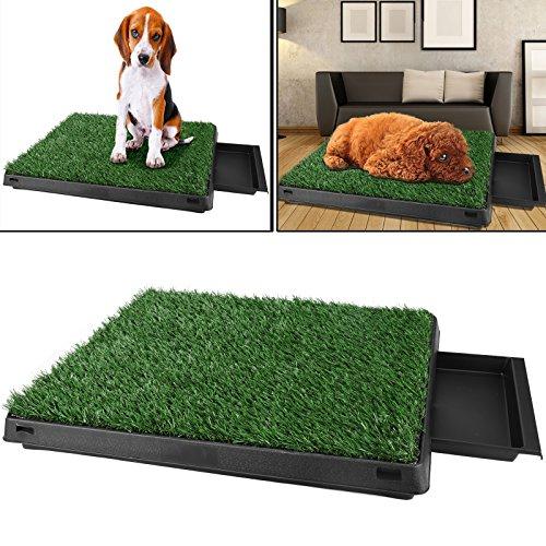 Sailnovo Hundeklo Hunde toilette echtem Rasen Welpentoilette Trainingsunterlage für kleine hunde grosse hunde ältere hunde Tier WC indoor 63x 50x 7(L x B x H)cm