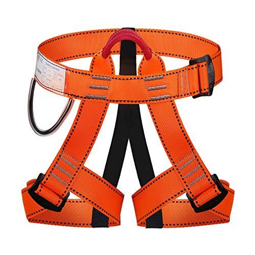 ENJOHOS Absturzsicherung Sicherheitsgurt Taille Klettergurt CE Zertifiziert für Bergsteigen Sportklettern Baumklettern Feuerwehr Outdoor