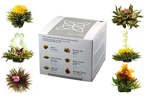 Feelino Edle 6er-Mischbox -Teeblumen 'white' in toller Probier- und Geschenkbox mit 6 verschiedenen Weißtee-Teerosen, einzeln vakuumverpackt, 1er Pack