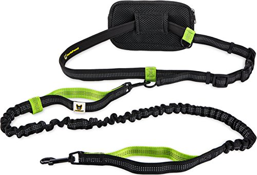 Hundefreund Joggingleine für kleine Hunde bis 15 kg von Elastische Reflektierende Hundeleine von 110 bis 160 cm dehnbar | Leine zum Joggen Laufen Radfahren Wandern