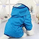 Hund Regenmantel, Haustier Regenmantel , Hundewelpen wasserdichter Mantel Hund Pudel Haustier blaue Regenkleidung