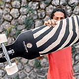 RollerCoaster 'Zebra' Longboard für Anfänger - Cruiser Longboard, drop through