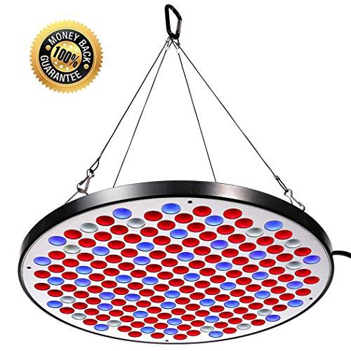 Niello Reflector 50W LED Pflanzenlampe LED Grow Light Vollspektrum Pflanzenlicht Led Grow Lamp nur 1 cm Dick mit Schalter für Zimmerpflanzen Gemüse und Blumen