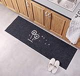 Lindong Türmatte Fußabtreter Eingangsmatte Sauberlaufmatte Schmutzfangmatte Anti-Rutsch Füßmatte Türvorleger viele Motiv wählbar 40x120cm Grau Löwenzahn