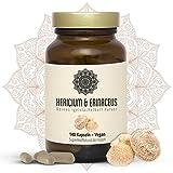 Hericium & Erinaceus Vitalpilz Kapseln I Vegan I Igelstachelbart Extrakt | 140 x 325mg Hericium Erinaceu Kapseln I Superfood I Vitales Immunsystem Und Gesunder Darm