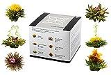 Feelino Edle 6er-Mischbox Schwarztee-Teeblumen 'black' in toller Probier- und Geschenkbox mit 6 verschiedenen -Teerosen, 1er Pack