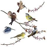 Komar Window-Sticker 'Birds', 1 Stück, bunt, 16003