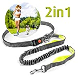 Elastische Jogging-Leine mit Sicherheitsverschluss, verstellbare Hunde-Leine (115-155 cm), Freihandleine mit Bauchgurt