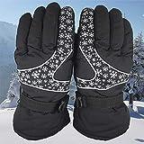 Wintersport warme wasserdichte Ski Motorrad Schnee Schneemobil Snowboard Handschuhe (Color : Black)