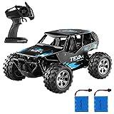 DIZA100 Ferngesteuertes Auto, 1:18 2WD RC Auto Off Road Buggy, 2.4 Ghz Radio Control Geländewagen Spielzeug Fahrzeug für Kinder Erwachsene