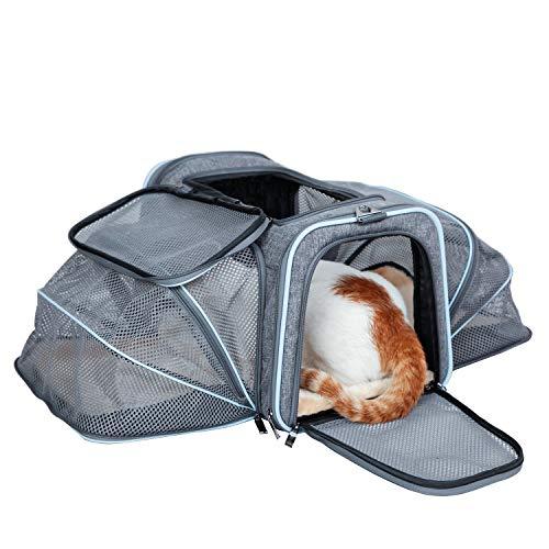 ABISTAB Hundebox faltbar Transportbox Hunde und Katze Transporttasche für Auto- und Flugreisen geeignet Tragetasche Maxi 72cm zweiseitig ausklappbar:3-Grau-Himmelblau