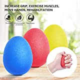 Peradix Handtrainer Fingertrainer Eiförmige Griffbälle 3pcs 30-60lbs Klettern Ball Hand Trainingsgerä Antistressbälle zur Kräftigung von Hand und Finger und Druckentlastung