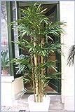 Künstlicher Giant Bambus 1,80m mit extra dicken natürlichen Bambusstangen, Sonderpreis