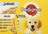 Pedigree Vital Protection Welpenfutter Hundefutter mit 4 Sorten Fleisch in Gelee, 48 Beutel (48 x 100 g)