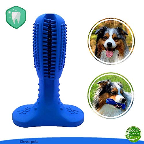 Cleverpets Hunde-Zahnbürste zur Hunde-Zahnpflege aus Naturkautschuk - Zahnsteinentferner für Hunde